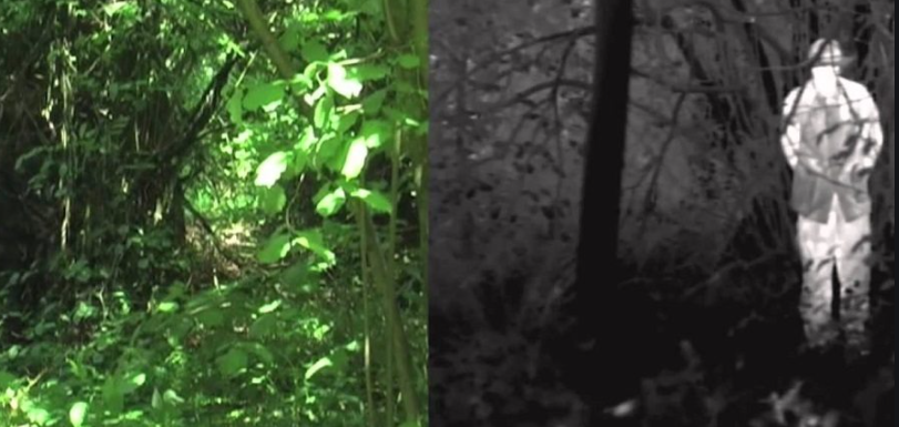 Night Vision Vs Thermal Imaging - What's the Difference Between